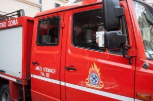 Μαγνησία: Μεγάλη φωτιά στη Βρύναινα - Ισχυρές επίγειες δυνάμεις στο σημείο