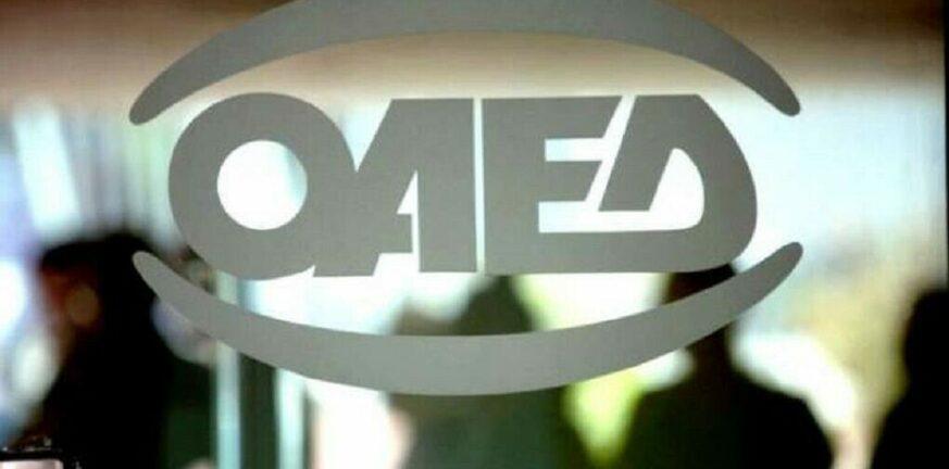 ΟΑΕΔ: Ποιοι και γιατί δεν μπορούν να κάνουν αίτηση για την κοινωφελή εργασία