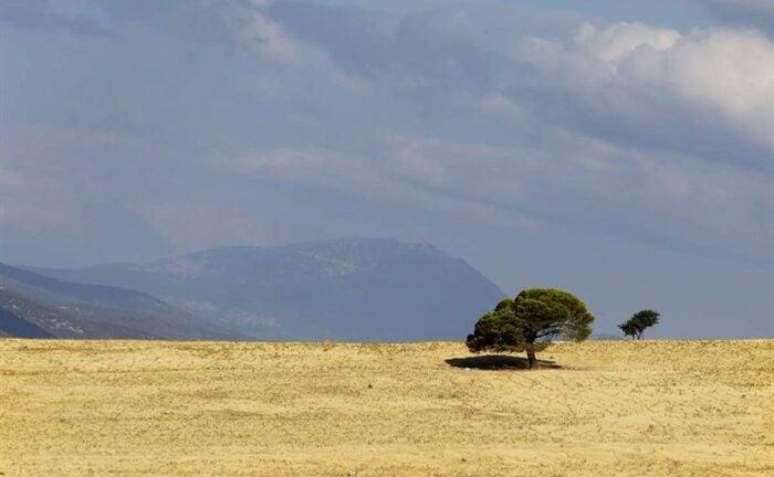 Δυτική Ελλάδα: Τι φέρνει η κλιματική αλλαγή
