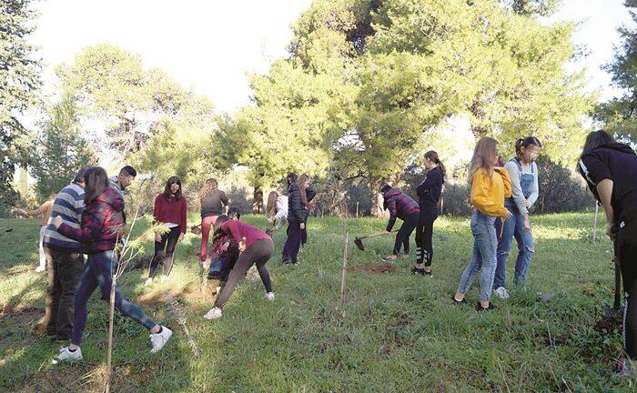 Το Λύκειο Παραλίας γιορτάζει τη μέρα της γης: Το δάσος αρχίζει από ένα δέντρο
