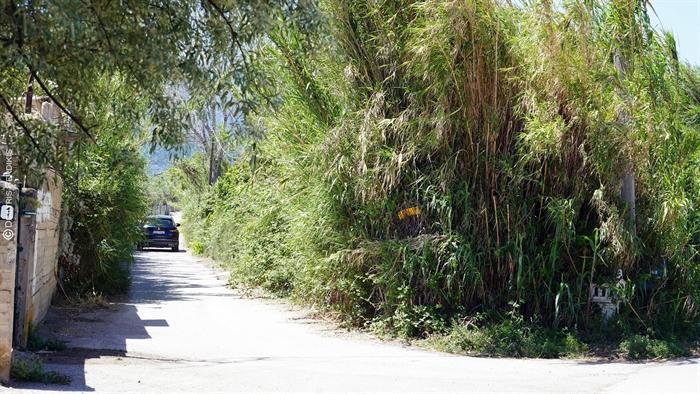 Αίγιο - Παραλία Αλυκής: Η βατότητα της Αλυκόβρυσης, τα μπαλώματα και η ανάπτυξη