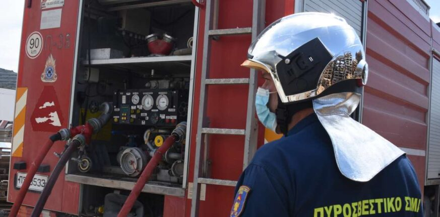 Πυροσβεστική: 31 δασικές πυρκαγιές το τελευταίο 24ωρο σε όλη τη χώρα - Σε ύφεση η φωτιά στα Βίλια