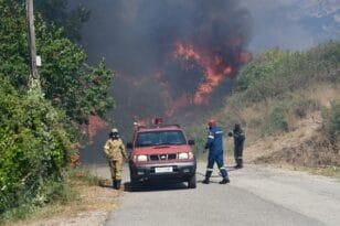 Σαράντα οκτώ δασικές πυρκαγιές εκδηλώθηκαν το τελευταίο 24ωρο - Επιχειρούν ακόμη στη Δροσιά Τριταίας