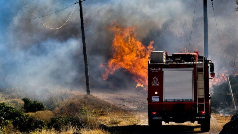 Φωτιά στον Έβρο: Ανεξέλεγκτο το μέτωπο, συνεχίζεται η μάχη με τις φλόγες ΦΩΤΟ & ΒΙΝΤΕΟ