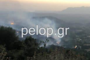 Ερύμανθος: Κανένα ενεργό μέτωπο στη Δροσιά - Παραμένει η ισχυρή πυροσβεστική δύναμη ΦΩΤΟ