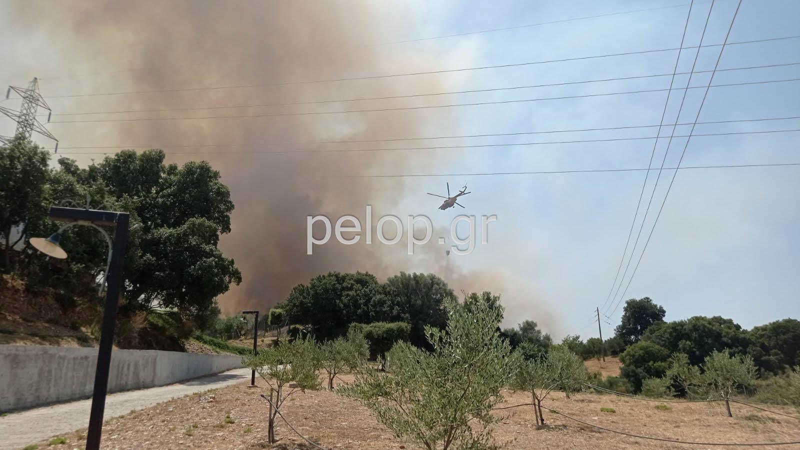 """Πάτρα: Οριοθετήθηκε η φωτιά στα Συχαινά - Προηγήθηκε εκκένωση του """"Αγίου Ηλία"""" - ΦΩΤΟ - ΒΙΝΤΕΟ - ΝΕΟΤΕΡΑ"""