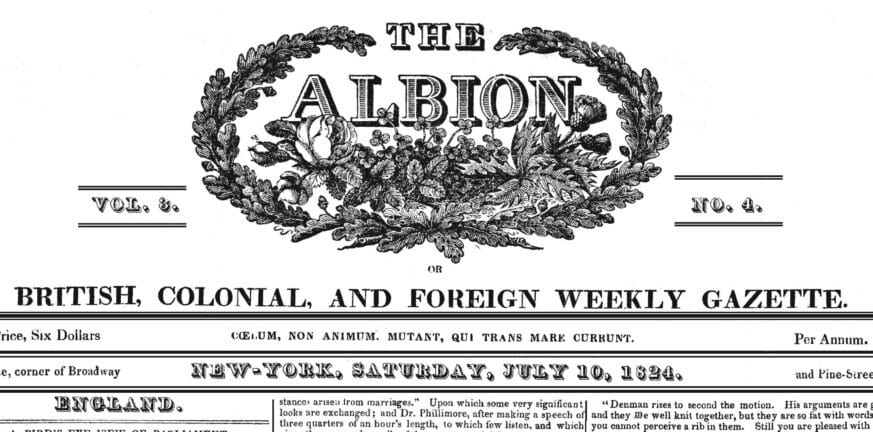 THE ALBION 1