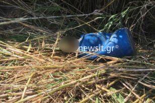 Κρήτη: Σε άνδρα νεαρής ηλικίας τα κόκκαλα που βρέθηκαν στο βαρέλι