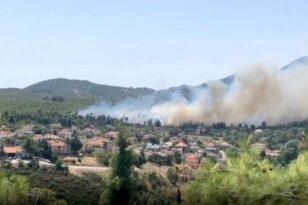 """Φωτιά στη Σταμάτα -""""Η κατάσταση είναι ανεξέλεγκτη, επικίνδυνη"""" - Μήνυμα από το 112 στους κατοίκους"""