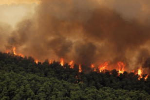 Φωτιά στα Βίλια: Καίει για 5η ημέρα -Πού βρίσκεται το μέτωπο