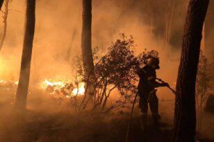 Εύβοια - Φωτιά: Προσήχθη ύποπτος για εμπρησμό στο Ασμήνιο