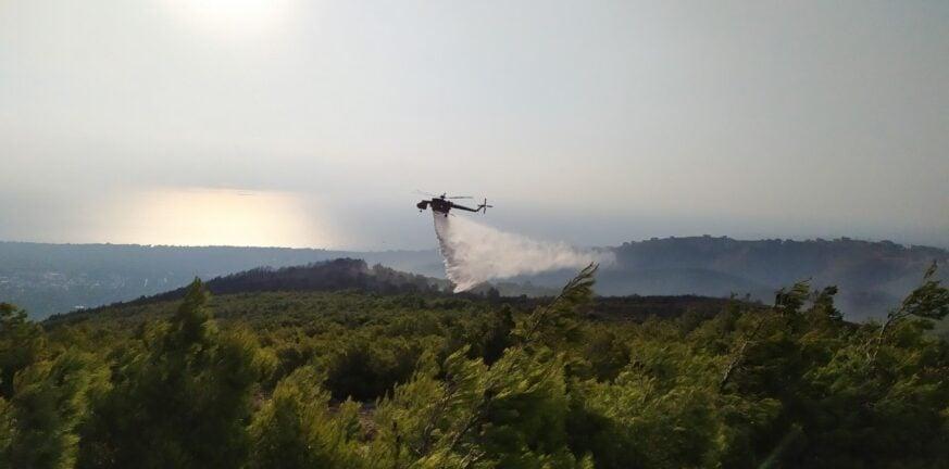 Μεγάλη φωτιά στη Μεγαλόπολη - Δόθηκε εντολή εκκένωσης χωριού