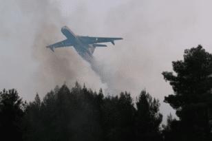 Οριοθετήθηκε η φωτιά στα Βίλια – Σε επιφυλακή η Πυροσβεστική