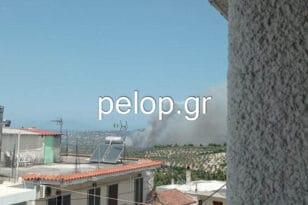 Μεγάλη πυρκαγιά και στο Θεολόγο Μαλεσίνας - ΦΩΤΟ ΑΝΑΓΝΩΣΤΗ