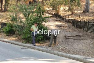 Πάτρα: Θρίλερ χωρίς εξήγηση με τα κρυμμένα βλήματα - Κλιμάκιο της ΕΛΑΣ στο Δασύλλιο