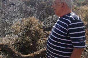 Νίκος Παπαδημάτος για φωτιά σε Νέο Σούλι: «Προέχει να σταθούμε όλοι στο πλευρό των κατοίκων»