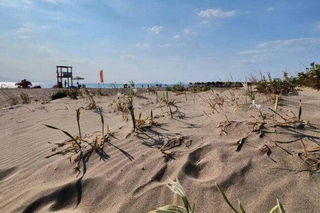 """Παραλία Καλόγριας - """"Κολυμπάμε και απολαμβάνουμε το νερό με ασφάλεια"""""""
