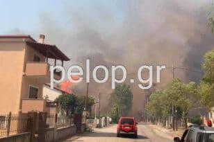 Αιγιάλεια - Φωτιά στην Ζήρια: 5 αεροπλάνα και 7 ελικόπτερα ρίχνουν νερό από αέρος - Εκατοντάδες πυροσβέστες