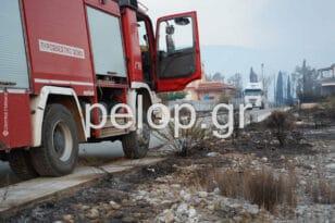 Αιγιάλεια-ΒΙΝΤΕΟ: Οι προσπάθειες των πυροσβεστών μέσα στις φλόγες στο μέτωπο της Ζήριας