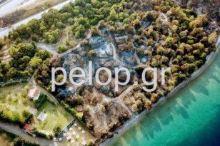 Αιγιάλεια - Φωτιά: Ένας καμένος παράδεισος από ψηλά - Drone αποκαλύπτει την καταστροφή ΒΙΝΤΕΟ