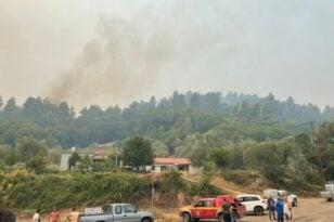 Φωτιά στην Ηλεία: Νέες αναζωπυρώσεις σε τρία μέτωπα - Εκκένωση του Λάλα