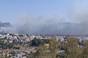 """Φωτιές: Οι αχίλλειες πτέρνες της Αχαΐας - O Γιώργος Κανέλλης μιλάει στην """"Π"""" για τα 6 """"ευάλωτα σημεία"""