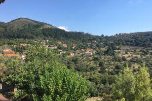 Το χωριό της Πελοποννήσου με τα περισσότερα αιωνόβια δέντρα της Ελληνικής Επανάστασης