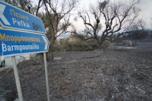 Αιγιάλεια: Με κενά η πυροπροστασία - Κρουνοί χωρίς νερό και σκουπίδια σε δάση!