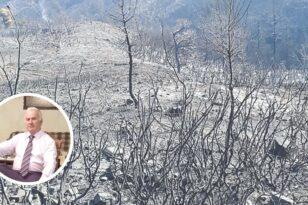 Ερύμανθος - Δροσιά: Κλείνουν οι πληγές στα βουνά