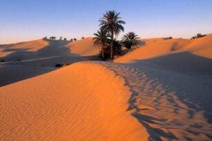 desert tynisia 1