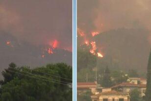Φωτιά στην Αττική - Επιχειρούν τα εναέρια μέσα, έφτασε η διεθνής βοήθεια