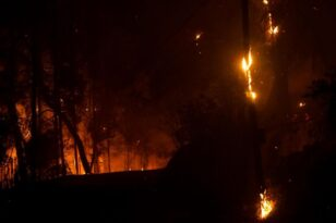Φωτιές σε Αρκαδία και Ηλεία: Άλλο ένα δύσκολο το βράδυ - Κάηκαν σπίτια στο Πυρρή Γορτυνίας - ΝΕΟΤΕΡΑ