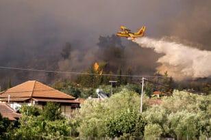 """Φωτιά – Ηλεία: Νέες αναζωπυρώσεις - """"Μάχη δίχως τέλος"""" για πυροσβέστες και κατοίκους"""