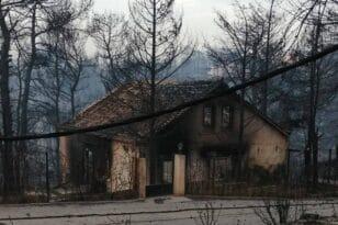 Νάνσυ Νικολαΐδου: Η ανάρτηση της δημοσιογράφου που κάηκε το σπίτι της στην πυρκαγιά