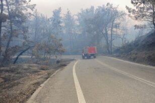Κύπριοι πυροσβέστες έρχονται στην Ελλάδα να βοηθήσουν