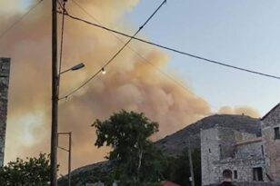 Σε εξέλιξη μεγάλη φωτιά στην Ανατολική Μάνη ΦΩΤΟ-ΒΙΝΤΕΟ