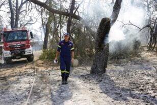 Αιγιάλεια - Ζήρια: Φάκελος φωτιά χωρίς πόρισμα για τα αίτια