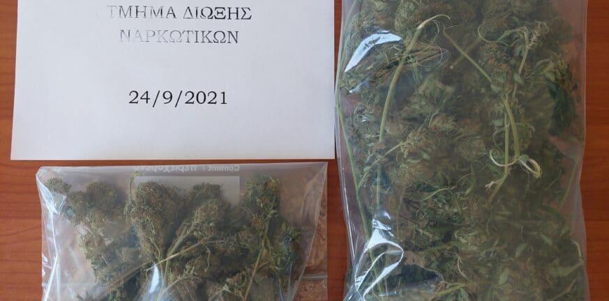 Αρχαία Ολυμπία: Συνελήφθη για καλλιέργεια και κατοχή ναρκωτικών- Η καβάτζα που εντοπίστηκε - ΦΩΤΟ