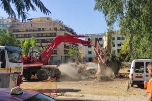 Πάτρα: Ευκάλυπτοι τέλος, προσεχώς «νέα δέντρα»