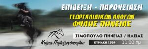 kp horse 12.09.2021