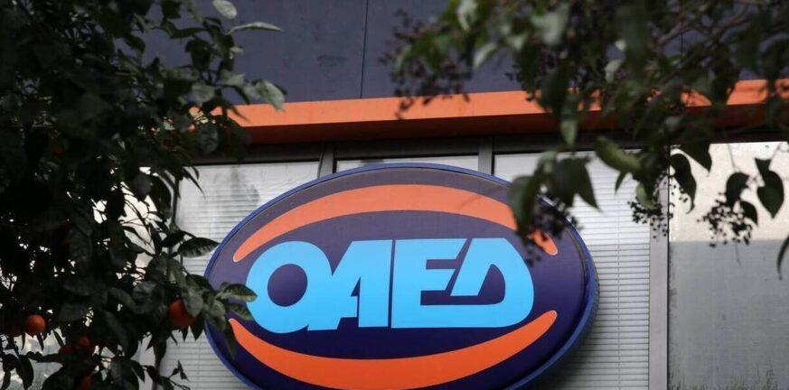 ΟΑΕΔ: Ποιοι φοιτητές μπορούν να πάρουν επίδομα 29 ευρώ την μέρα