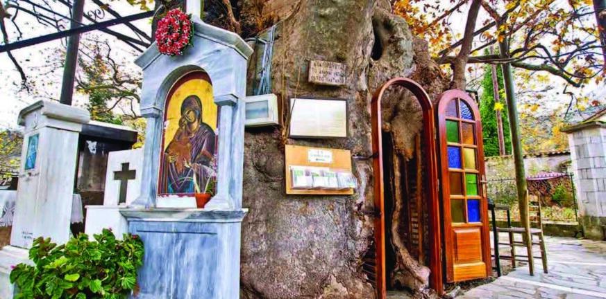Καλάβρυτα: Την Τετάρτη το ιστορικό προσκύνημα στην Παναγία την Πλατανιώτισσα