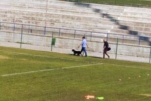 Με σκύλο της αντιτρομοκρατικής η Αστυνομία στο γήπεδο για το Παναχαϊκή-Αιγάλεω!ΦΩΤΟΓΡΑΦΙΕΣ