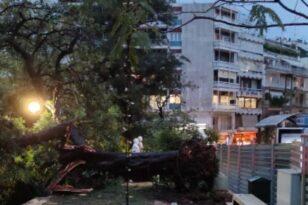Ο «Μπάλλος» χτύπησε και το Κολωνάκι - Πτώση δέντρου