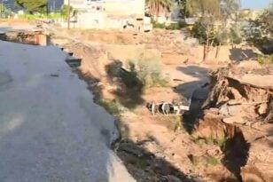 Απίθανο τροχαίο στην Κινέτα – Αυτοκίνητο έπεσε σε ρέμα 12 μέτρων