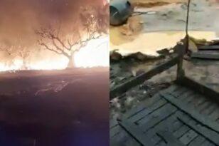 Μανωλάδα: Τυλίχθηκαν στις φλόγες οι παράγκες εργατών στα φραουλοχώραφα - Δύο τραυματίες