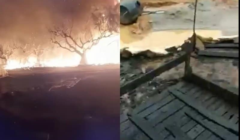Μανωλάδα: Τυλίχθηκαν στις φλόγες οι παράγκες εργατών στα φραουλοχώραφα – Δύο τραυματίες