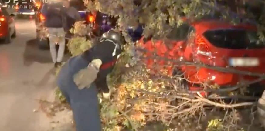 Κακοκαιρία «Αθηνά»: Πτώσεις δέντρων, καταστράφηκαν αυτοκίνητα - BINTEO